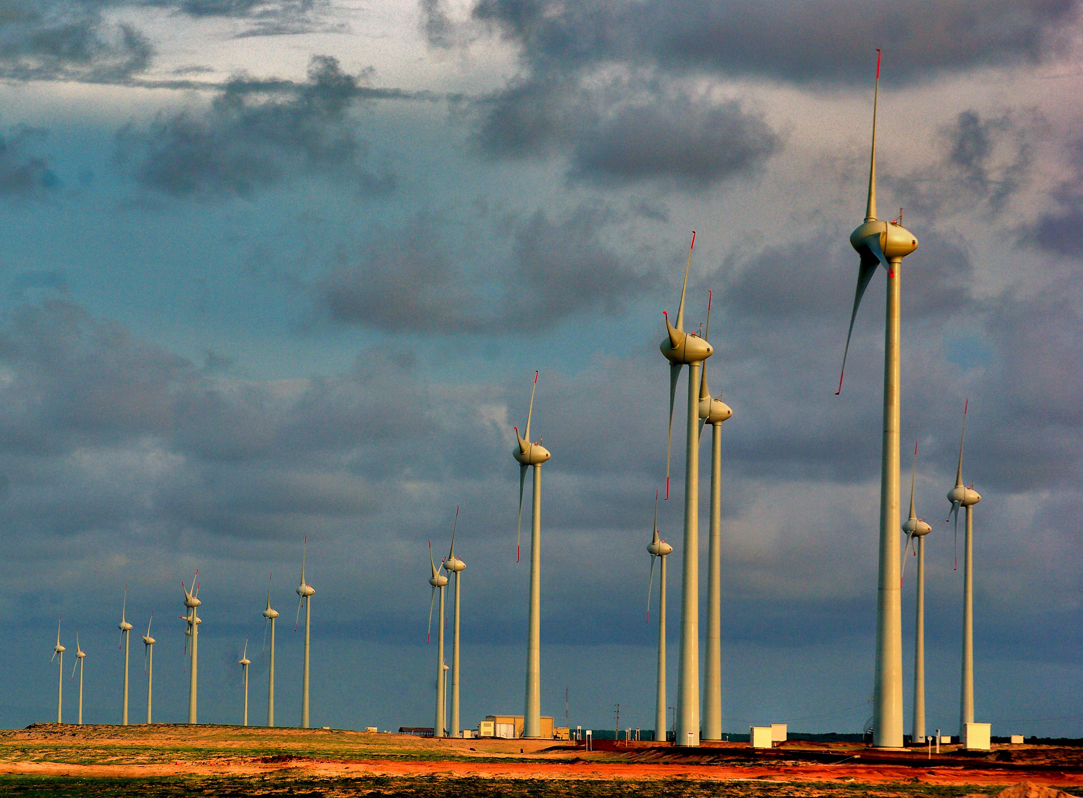 Suministro eléctrico de procedencia 100% renovable