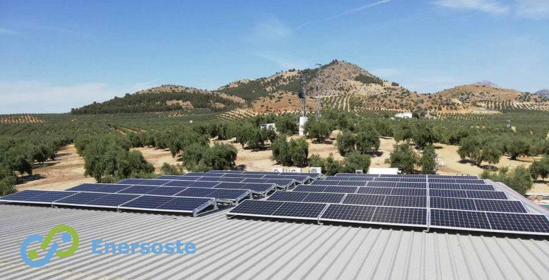 Instalación solar fotovoltaica en estación de servicio en Jaén